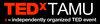"""TED talk  """"Coney Island Daydream"""""""